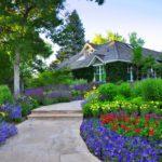 Цветы на даче: наполняем сад яркими красками
