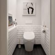 белая отделка туалета