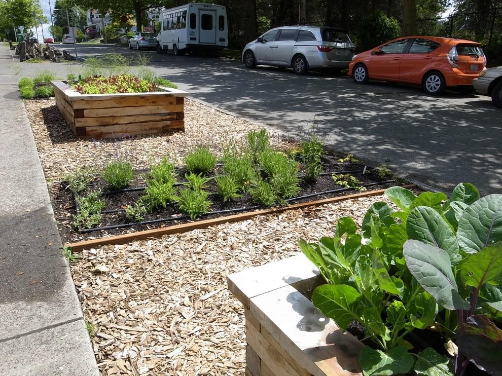 Новости PRO Ремонт - Как оформить грядки на даче и вырастить хороший урожай 14