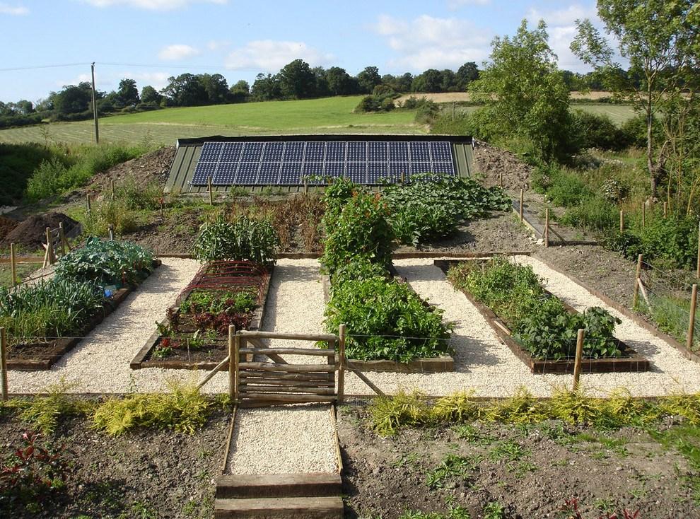 Новости PRO Ремонт - Как оформить грядки на даче и вырастить хороший урожай 20