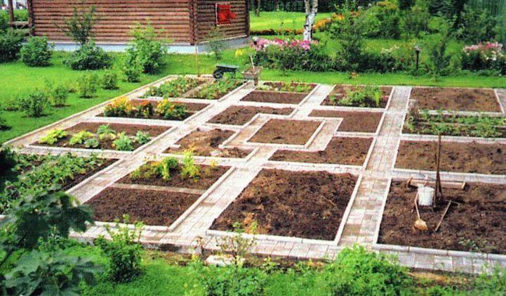 Новости PRO Ремонт - Как оформить грядки на даче и вырастить хороший урожай 24