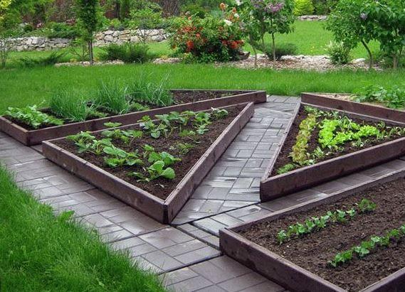 Новости PRO Ремонт - Как оформить грядки на даче и вырастить хороший урожай 25