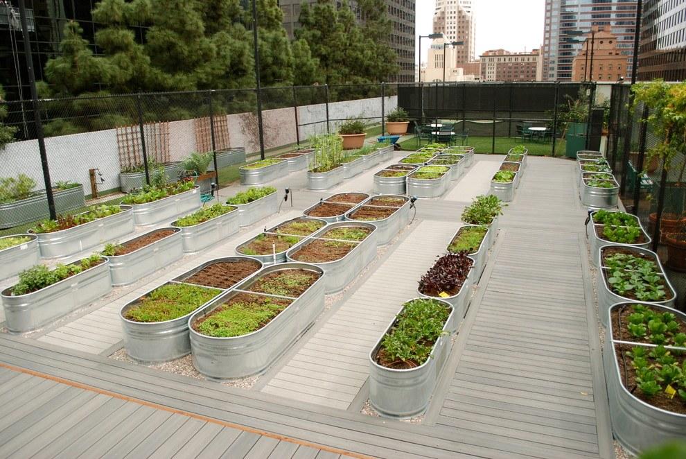 Новости PRO Ремонт - Как оформить грядки на даче и вырастить хороший урожай 27