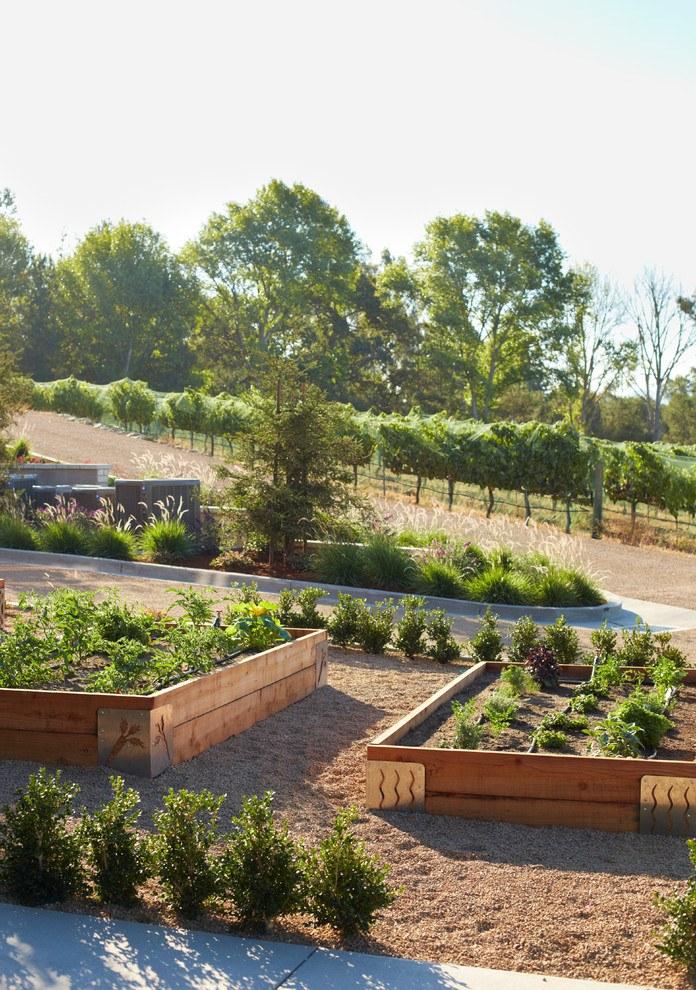 Новости PRO Ремонт - Как оформить грядки на даче и вырастить хороший урожай 35