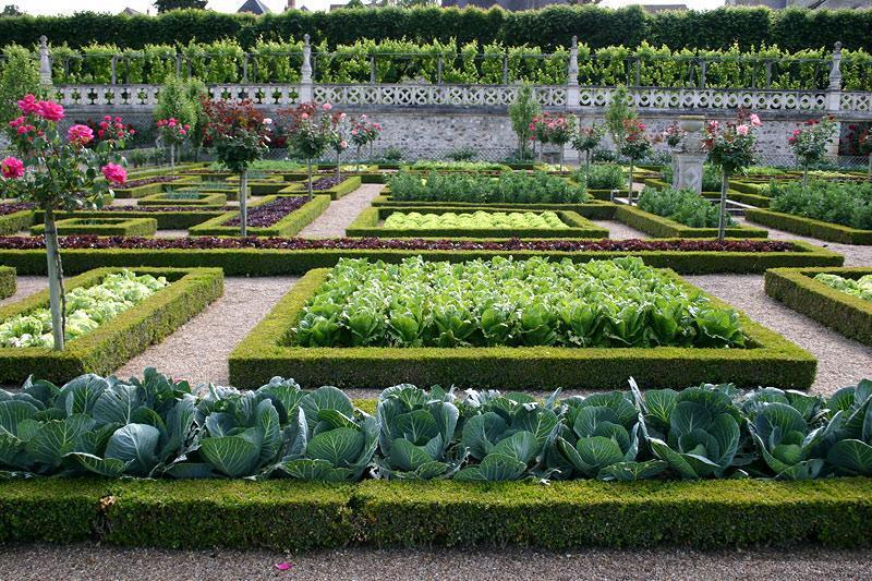Новости PRO Ремонт - Как оформить грядки на даче и вырастить хороший урожай 39