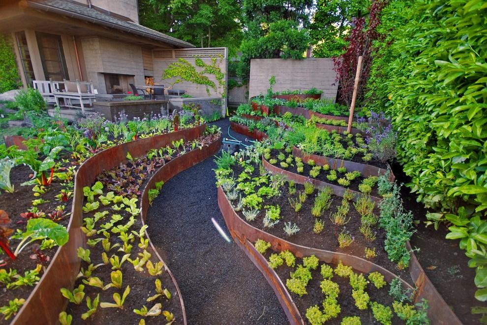 Новости PRO Ремонт - Как оформить грядки на даче и вырастить хороший урожай 43