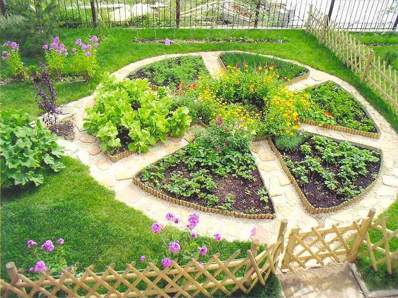 Новости PRO Ремонт - Как оформить грядки на даче и вырастить хороший урожай 51