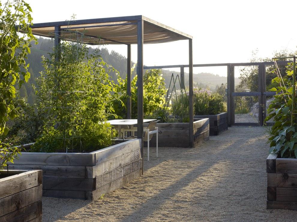 Новости PRO Ремонт - Как оформить грядки на даче и вырастить хороший урожай 69