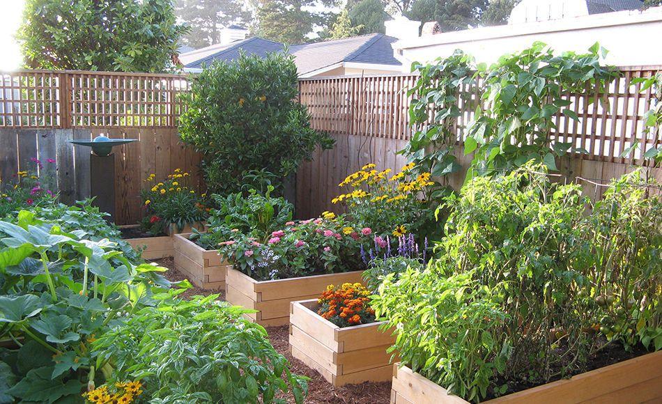 Новости PRO Ремонт - Как оформить грядки на даче и вырастить хороший урожай 73