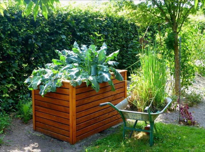 Новости PRO Ремонт - Как оформить грядки на даче и вырастить хороший урожай 80