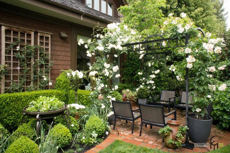 Сад из роз в частном доме как оформить