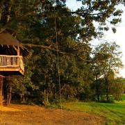 Небольшой дом на дереве