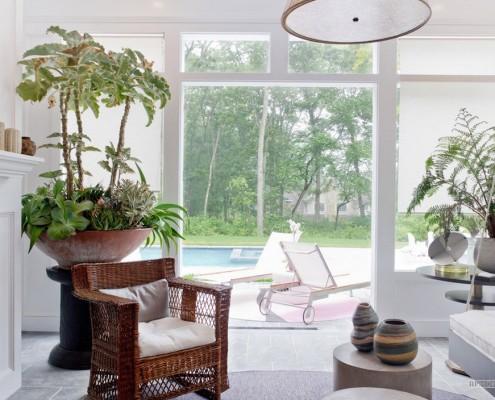 Комнатные деревья: 40 фото примеров, Растения и цветы в интерьере домов и квартир