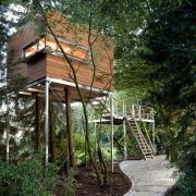 Большой дом в лесу
