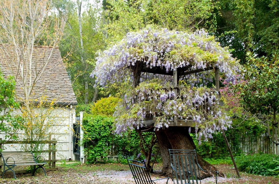 Дом на дереве в цветах