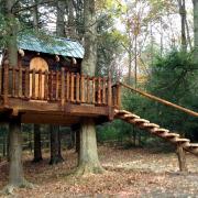 Большая лестница к домику
