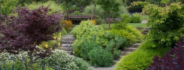 каменные лестницы на участке