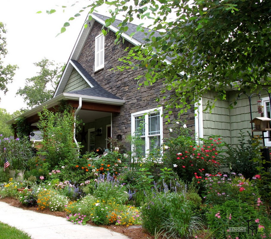 Дачный домик, окруженный растениями